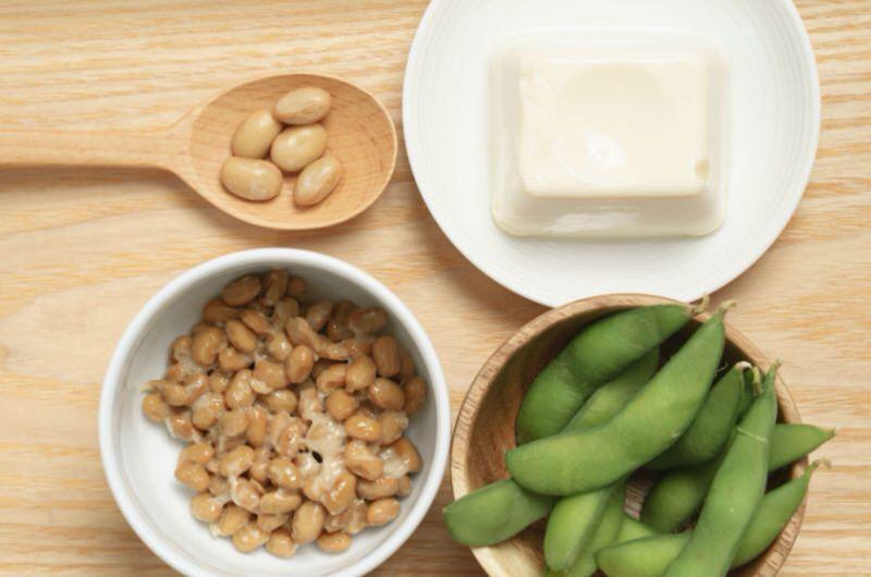 Principales fuentes de isoflavonas de soja