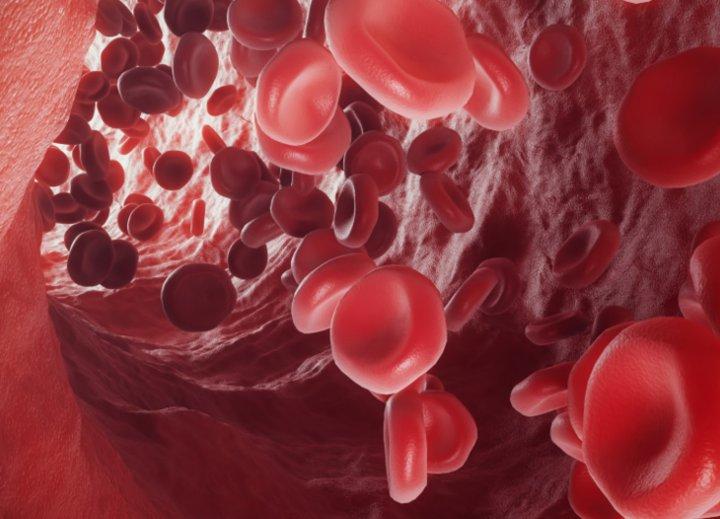 Beneficios del acido pantotenico