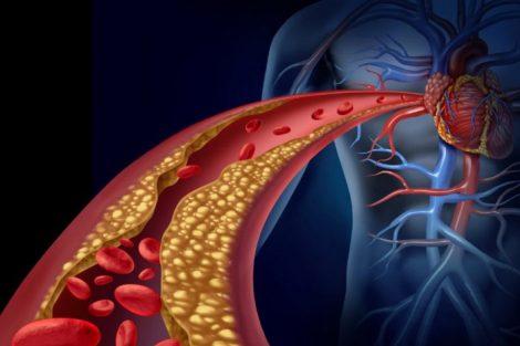 Colesterol: funciones principales y para qué sirve