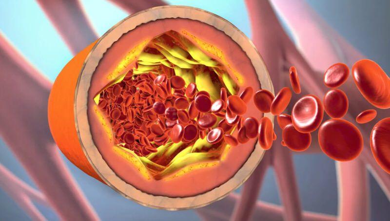 Funciones principales del omega-6