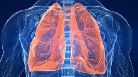 Funciones de los pulmones