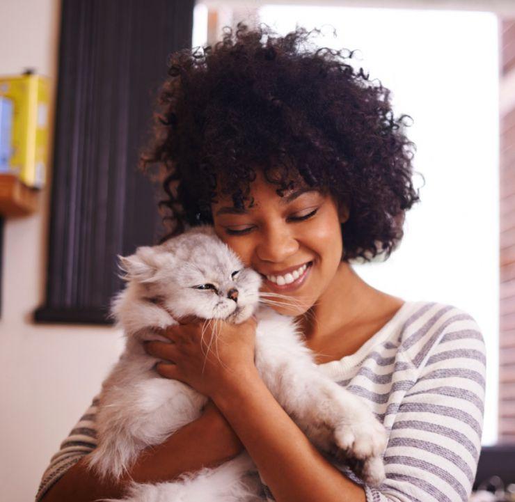 Cualidades de tener gatos en casa