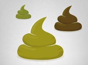 Heces verdes: por qué aparecen, causas y tratamiento