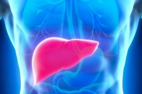 Hepatitis autoinmune: cuando el sistema inmune ataca el hígado
