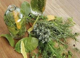 Hierbas y plantas chinas para la salud