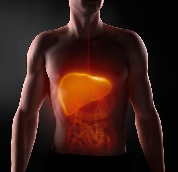 Todo lo que necesitas saber sobre el hígado perezoso