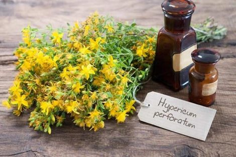 Hipérico: descubre sus beneficios y propiedades medicinales