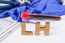 Hormona luteinizante (LH): qué es, funciones y valores normales