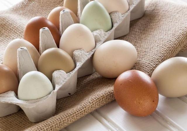 Huevos y gastroenteritis