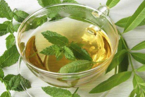 Cómo calmar los gases con infusión de hierbaluisa: receta y beneficios