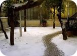 Comienzo invierno 2014
