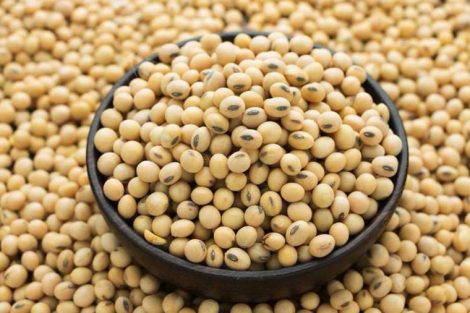 Isoflavonas de soja: beneficios para la mujer, fuentes y cuándo tomarlas