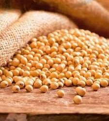 Isoflavonas de soja: beneficios para la salud de las mujeres
