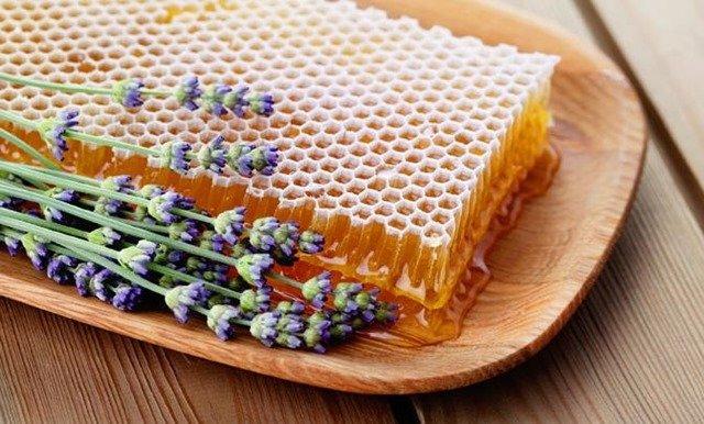 lavanda-miel