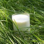 Los beneficios de la leche de cabra para la piel