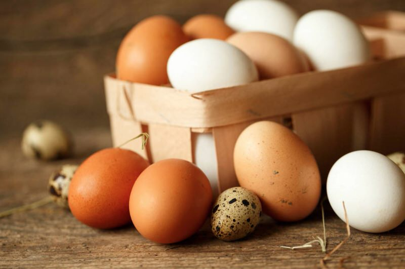 Propiedades de la lecitina de huevo