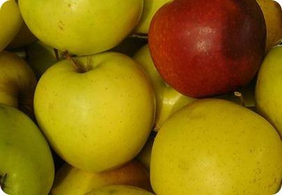 manzanas para el colesterol