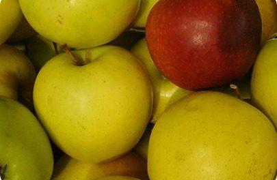 Las manzanas son beneficiosas contra el colesterol