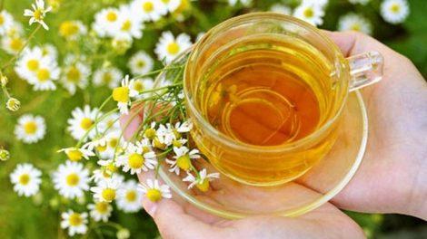 Los beneficios de la manzanilla para la belleza más natural
