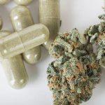 Los principales usos médicos y terapéuticos de la marihuana