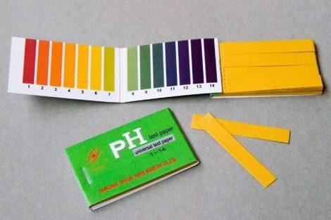 Cómo medir el pH de nuestro cuerpo
