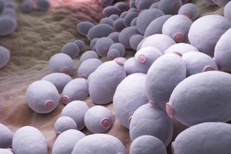 Qué es la micosis: causas, síntomas y tratamiento