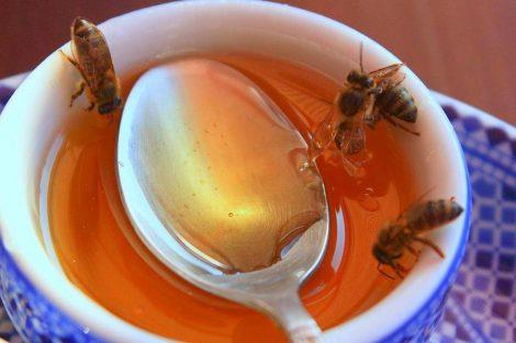 Miel para la gripe y el resfriado