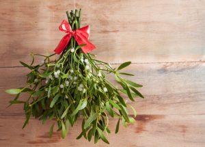 Qué es el muérdago navideño y qué se hace con él en Navidad