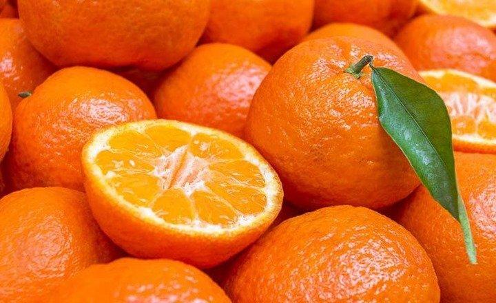 naranjas-otono
