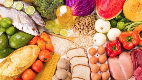 Necesidades nutricionales de carbohidratos, proteinas y grasas