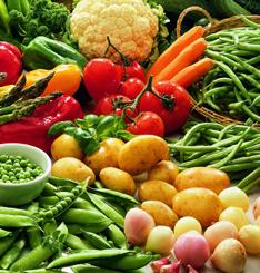 necesidades-nutricionales