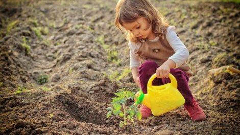 Niños jardinero