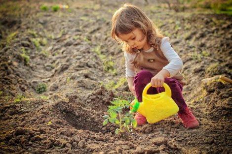 Niños jardineros: enseñando las valores de la naturaleza