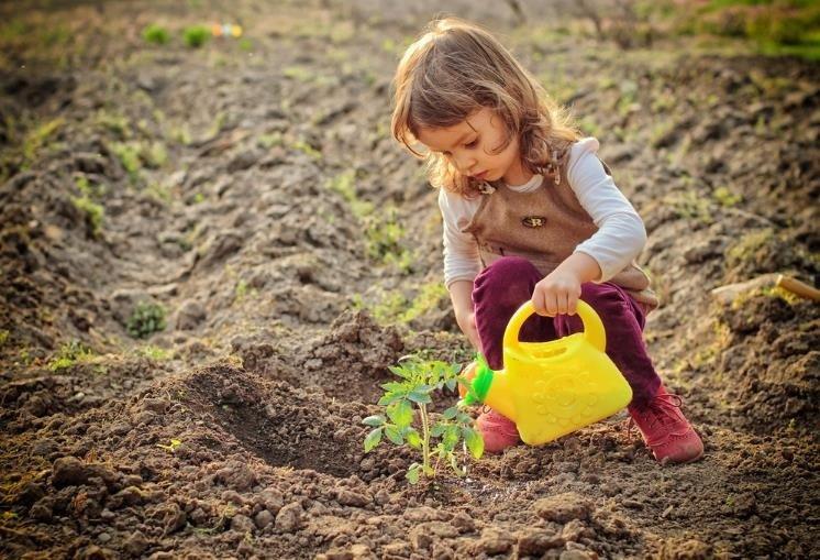 Por qué los niños deben tener su propio jardín