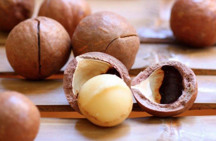 Que son las nueces de macadamia