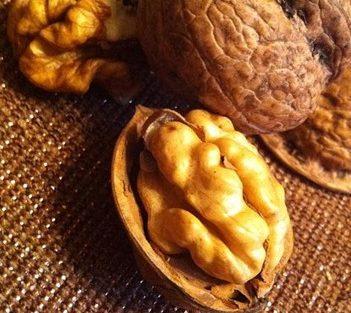Nutrientes esenciales para la depresión y alimentación adecuada