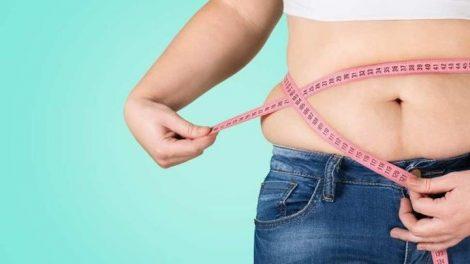 Origen de la obesidad