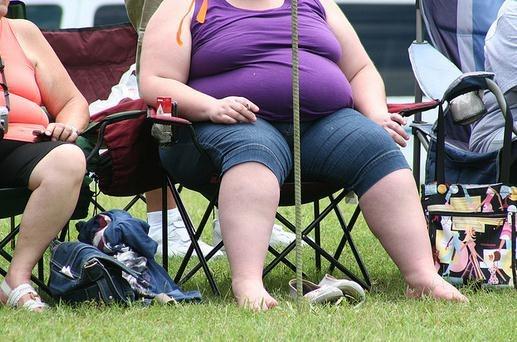 Obesidad y prediabetes
