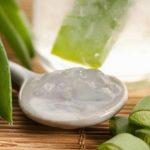 Cómo preparar y obtener el jugo de áloe vera natural y fácilmente en casa