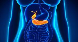 Qué es el páncreas, para qué sirve y funciones principales