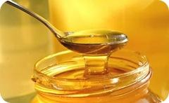 Remedios caseros para las picaduras de pulgas