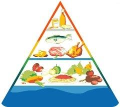Ejercicio y alimentación