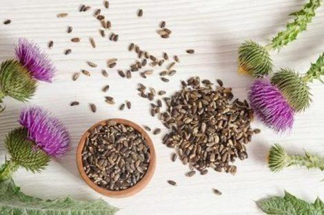 5 plantas medicinales para el hígado