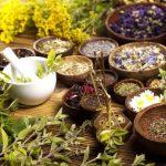 Plantas y hierbas para mejorar la fertilidad naturalmente
