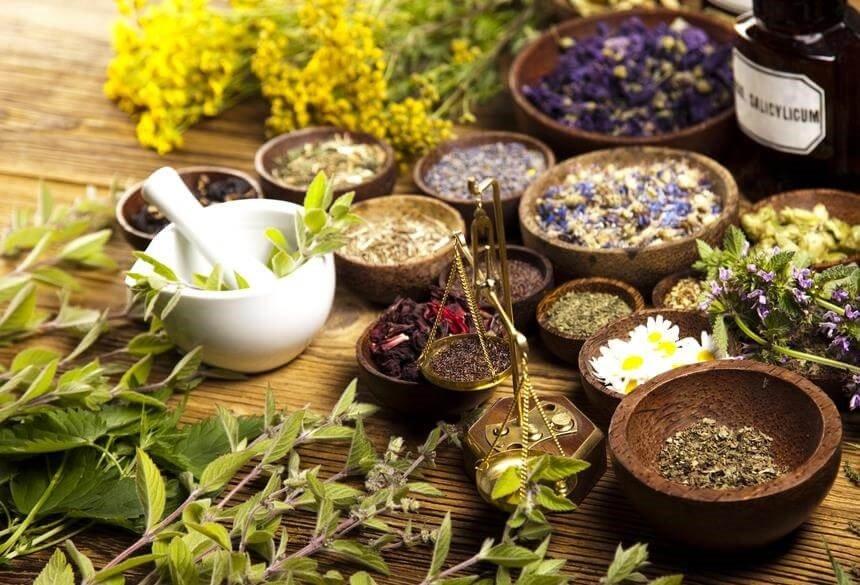 Plantas medicinales para mejorar la fertilidad naturalmente