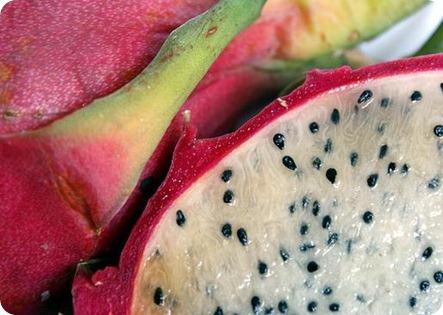 propiedades pitaya