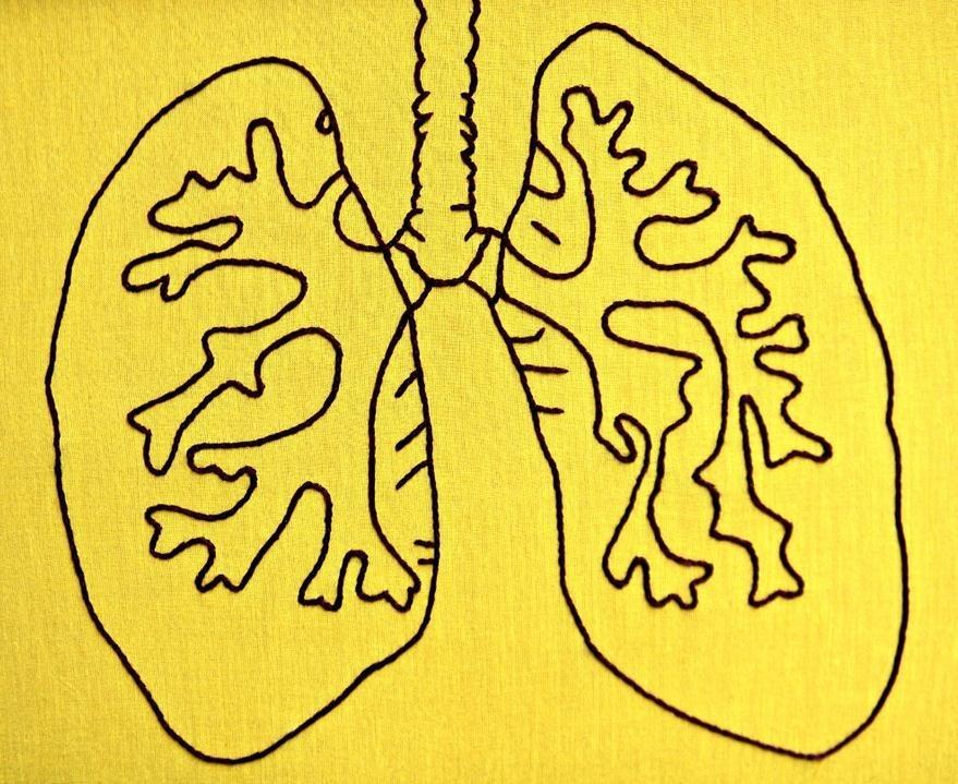 Cuidar los pulmones