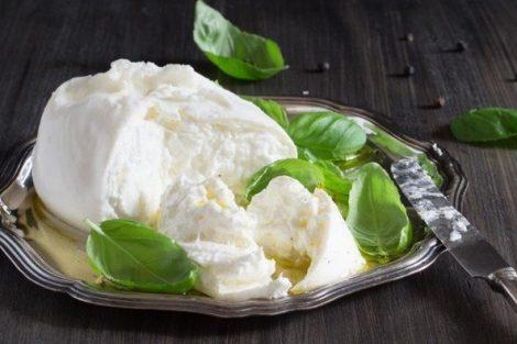 Queso vegano de anacardos fermentado con rejuvelac: receta