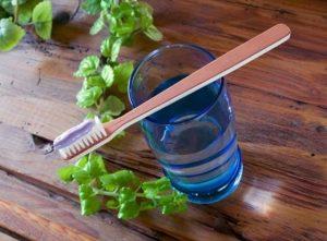 Cómo hacer pasta de dientes con plantas medicinales: 2 recetas