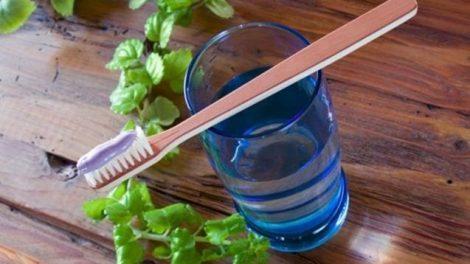 Pasta de dientes naturales con plantas medicinales